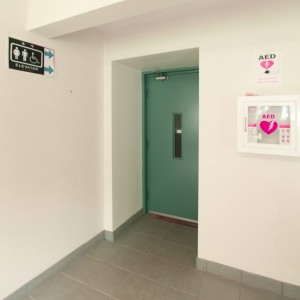 bf elevator-072216-1024x1024
